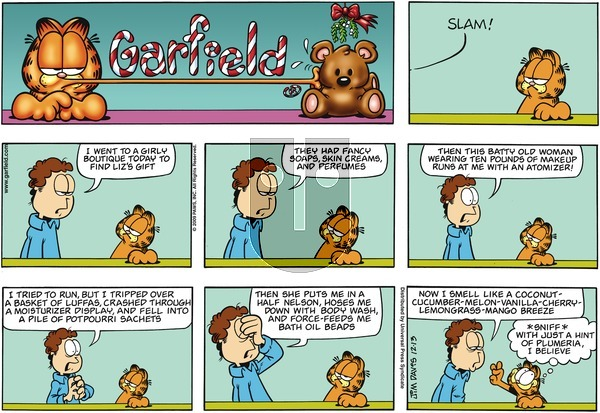 Garfield on Sunday December 13, 2009 Comic Strip