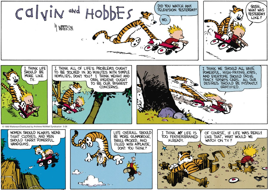 Calvin and Hobbes by Bill Watterson for May 26, 2019