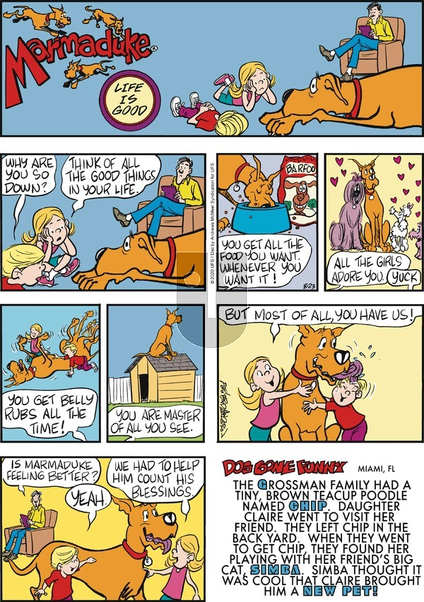 Marmaduke on Sunday August 23, 2020 Comic Strip