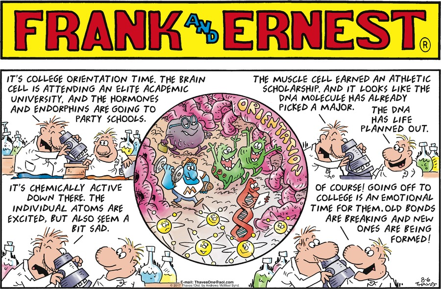 Frank and Ernest Comic Strip for August 06, 2017