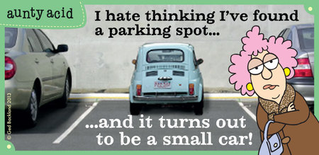 I hate thinking i've found a parking spot... and it turns out to be a small car !