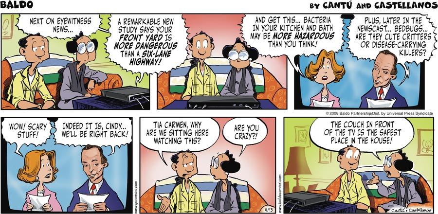 Baldo for Apr 13, 2008 Comic Strip