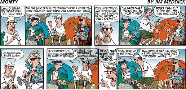 Monty on Sunday August 27, 2017 Comic Strip