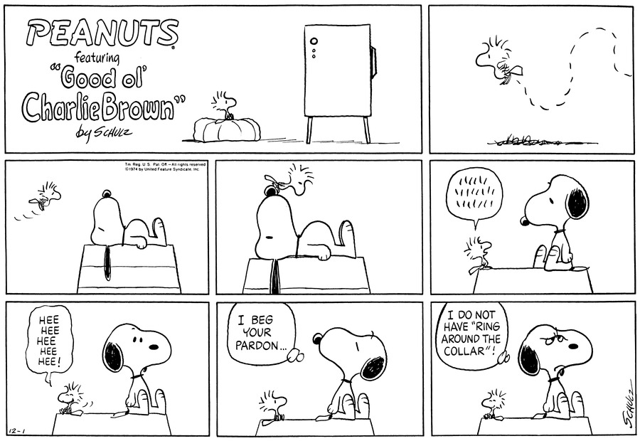 Peanuts Comic Strip for December 01, 1974