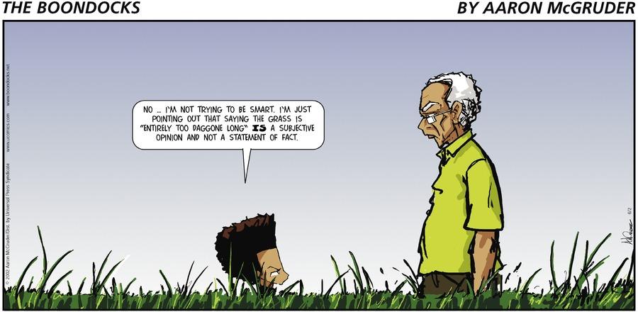 The Boondocks for Aug 13, 2017 Comic Strip