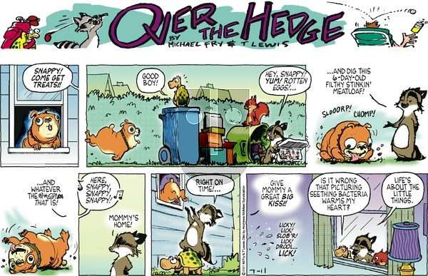 Over the Hedge on Sunday July 11, 2021 Comic Strip