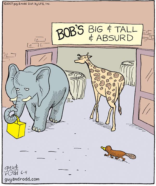 BOB's Big & Tall & Absurd