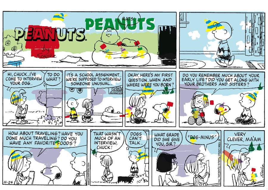 Peanuts Comic Strip for November 17, 1996