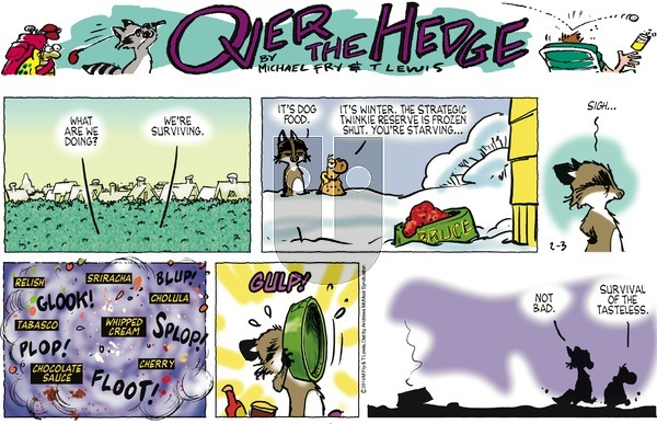 Over the Hedge on Sunday February 3, 2019 Comic Strip