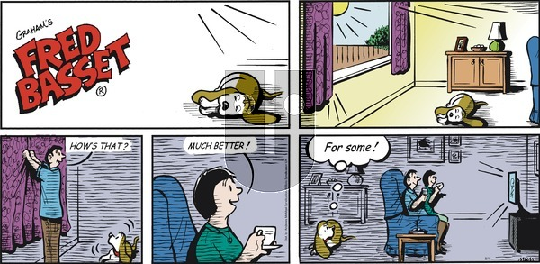 Fred Basset on Sunday August 1, 2021 Comic Strip