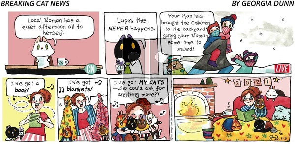 Breaking Cat News - Sunday January 3, 2021 Comic Strip