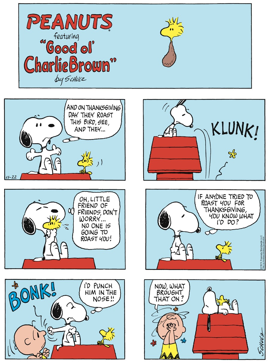 Peanuts by Charles Schulz on Sun, 22 Nov 2020