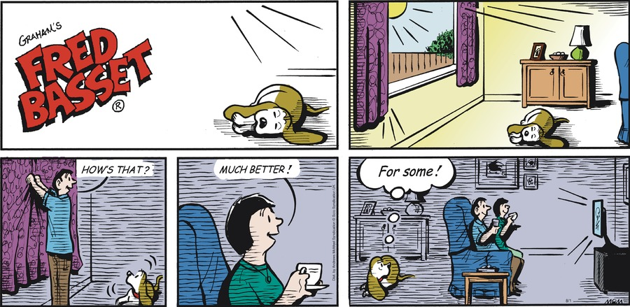 Fred Basset Comic Strip for August 01, 2021
