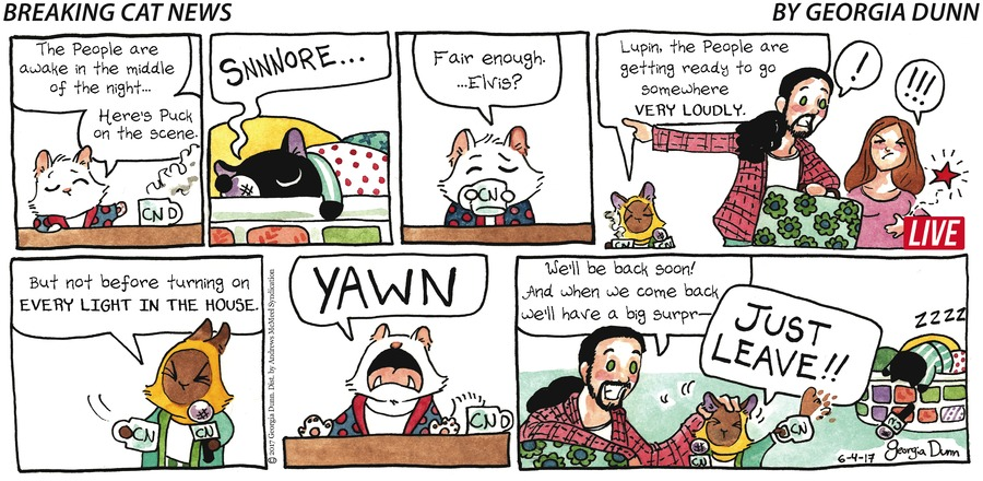 Breaking Cat News for Jun 4, 2017 Comic Strip