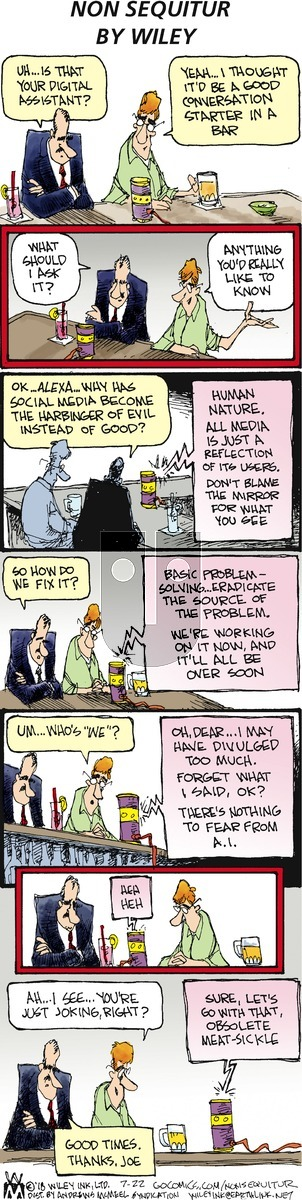 Non Sequitur - Sunday July 22, 2018 Comic Strip