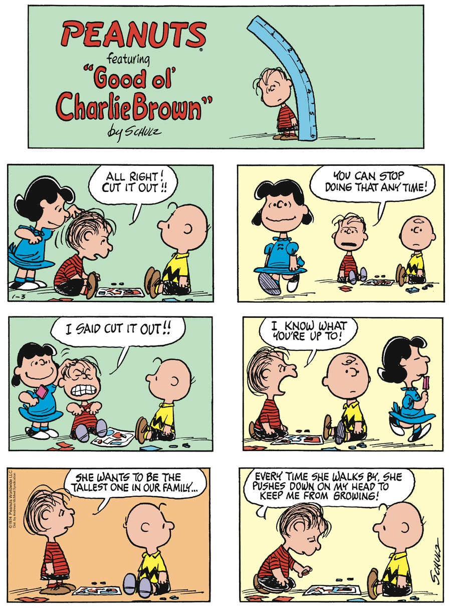 Peanuts Comic Strip for January 03, 2021