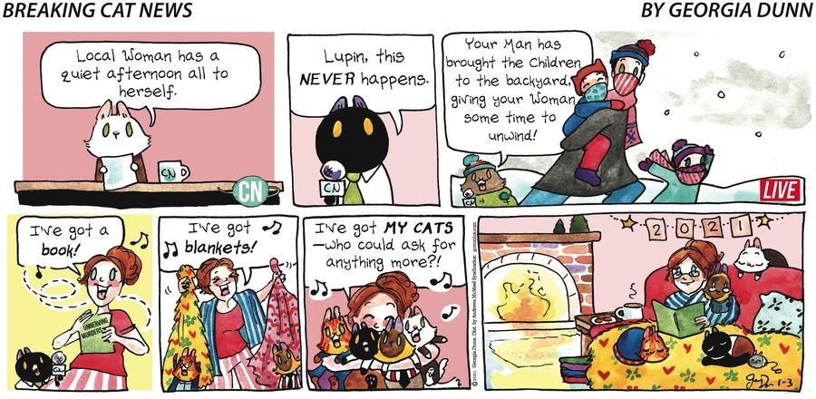 Breaking Cat News Comic Strip for January 03, 2021
