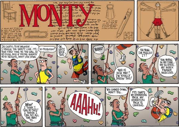 Monty on Sunday January 25, 2015 Comic Strip