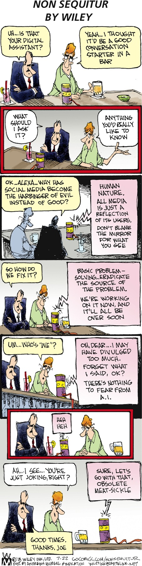 Non Sequitur Comic Strip for July 22, 2018