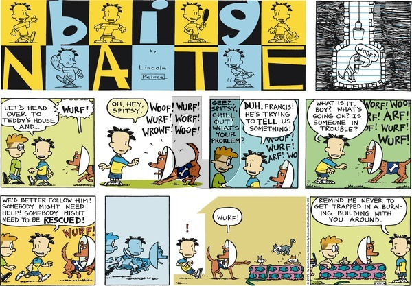Big Nate on Sunday July 1, 2018 Comic Strip