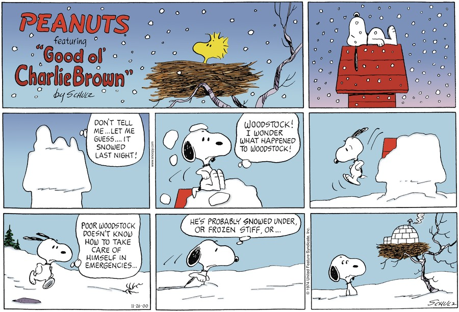 Snoopy: *sleeping on the doghouse while it's snowing* *wakes up completely covered in snow*