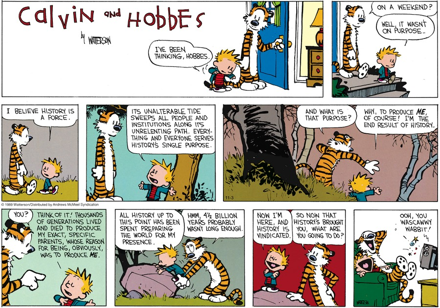 Calvin and Hobbes by Bill Watterson on Sun, 03 Nov 2019