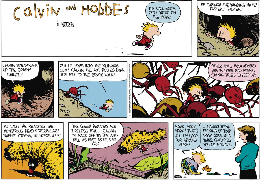 Calvin and Hobbes Comic Strip for May 06, 2018