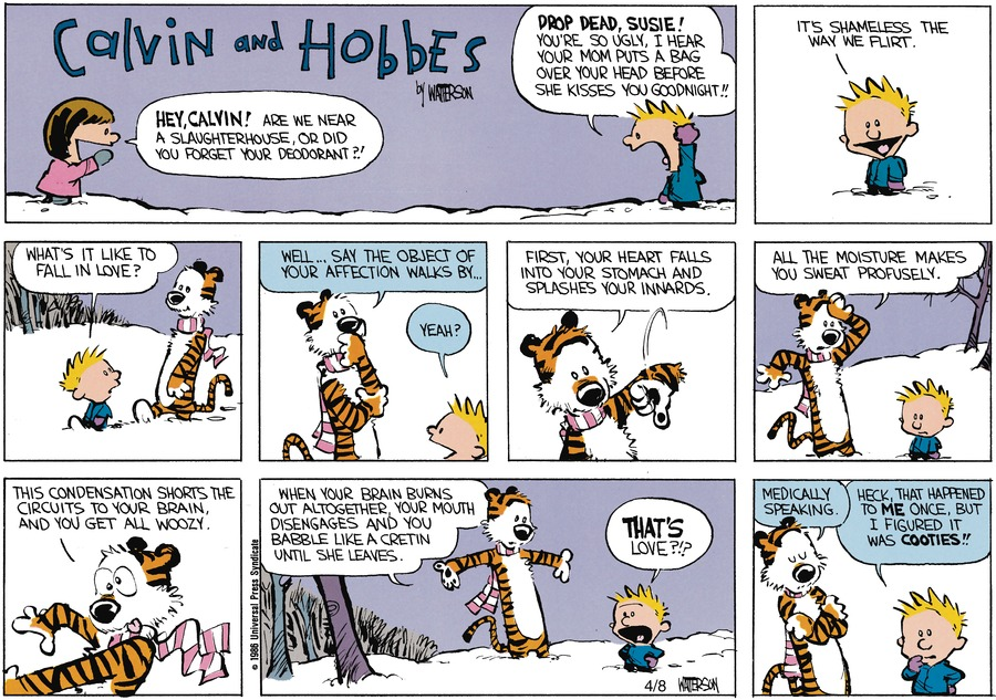 Calvin and Hobbes for May 26, 1991 Comic Strip