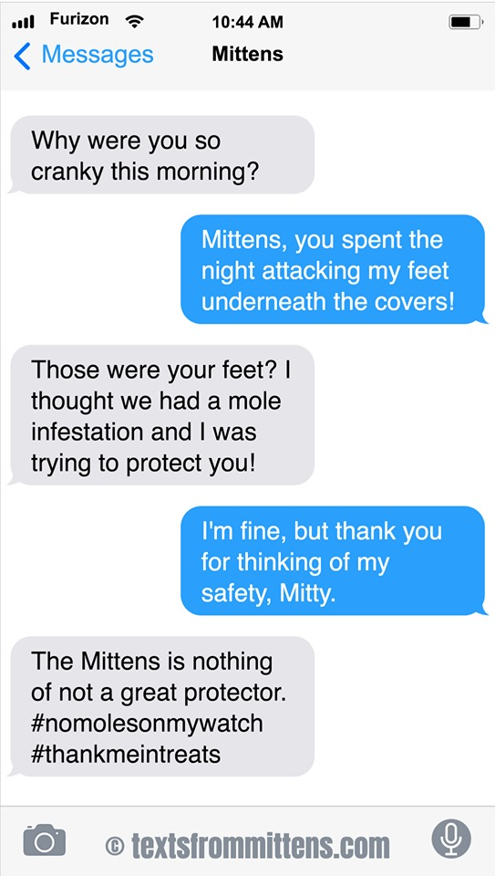 Texts From Mittens by Angie Bailey on Sun, 28 Jun 2020
