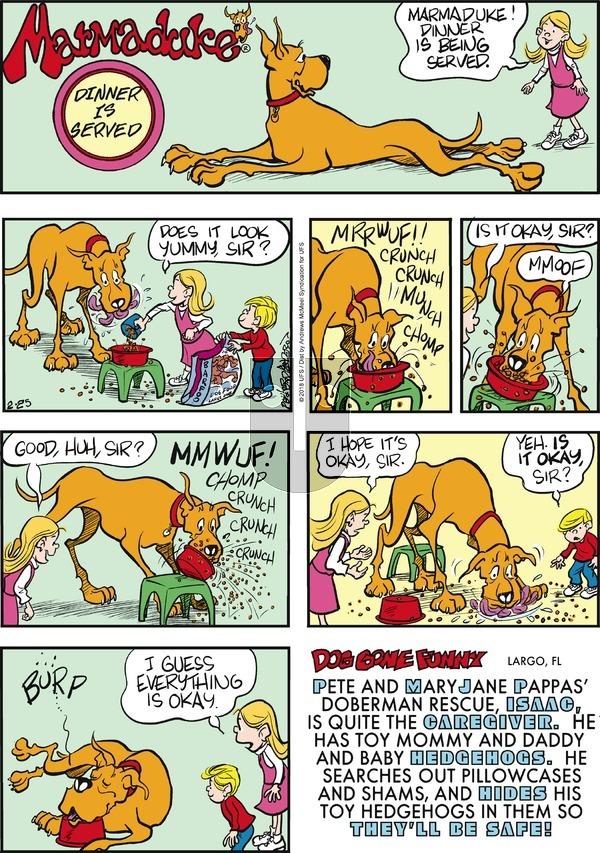 Marmaduke on Sunday February 25, 2018 Comic Strip