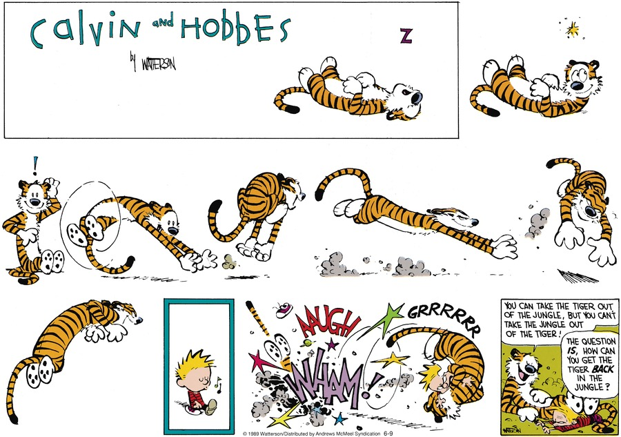 Calvin and Hobbes by Bill Watterson for June 09, 2019