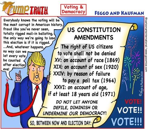 ViewsAmerica - Sunday November 1, 2020 Comic Strip
