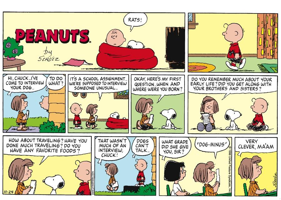 Peanuts Comic Strip for November 24, 1996
