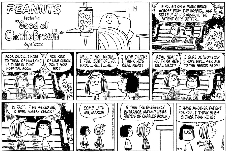 Peanuts Comic Strip for July 22, 1979