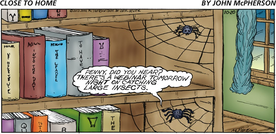 Bottom spider: Penny, did you hear? There's a webinar tomorrow night on catching large insects.