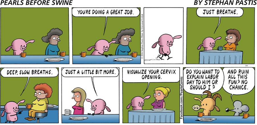 Pearls Before Swine Comic Strip for September 04, 2016