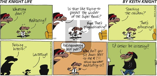 The Knight Life on Sunday December 2, 2012 Comic Strip