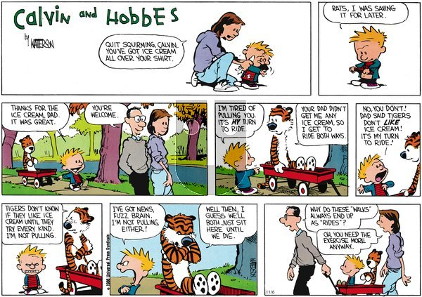 Calvin and Hobbes - Sunday November 6, 2011 Comic Strip