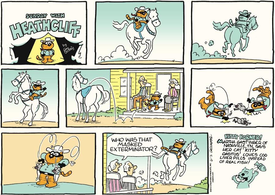 Heathcliff for Jun 2, 2013 Comic Strip