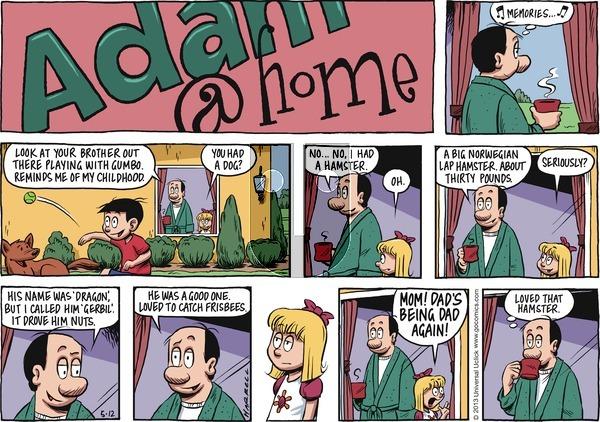 Adam@Home on Sunday May 12, 2013 Comic Strip