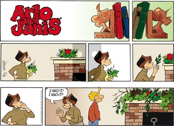 Arlo and Janis on Sunday December 9, 2018 Comic Strip