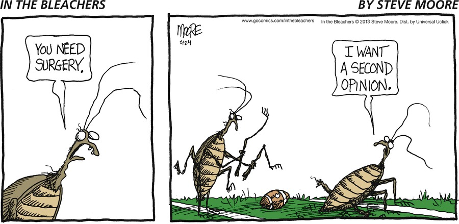 In the Bleachers for Feb 24, 2013 Comic Strip