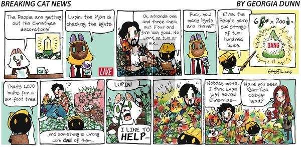 Breaking Cat News on Sunday December 6, 2020 Comic Strip