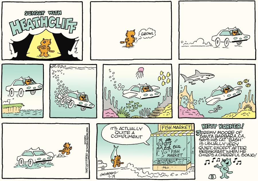 Heathcliff by George Gately on Sun, 18 Jul 2021