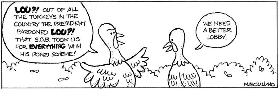 Medium Large for Nov 27, 2013 Comic Strip