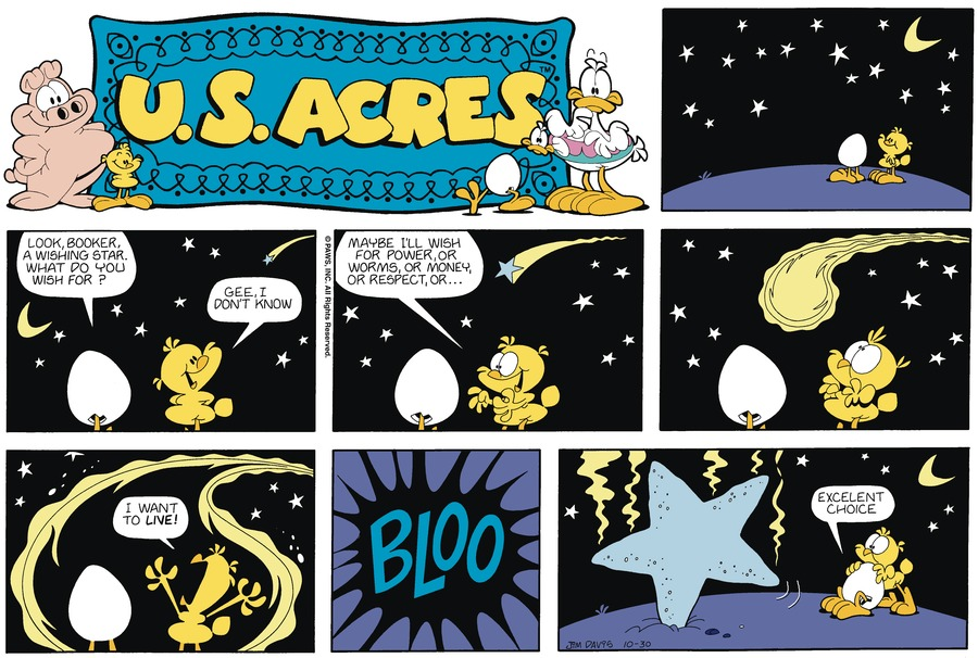 U.S. Acres for Oct 27, 2013 Comic Strip