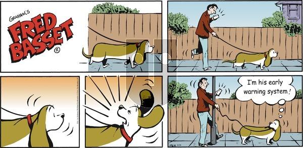 Fred Basset - Sunday June 28, 2020 Comic Strip