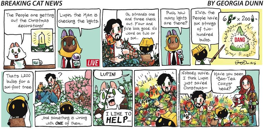 Breaking Cat News Comic Strip for December 06, 2020