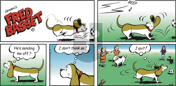 Fred Basset on Sunday August 11, 2019 Comic Strip