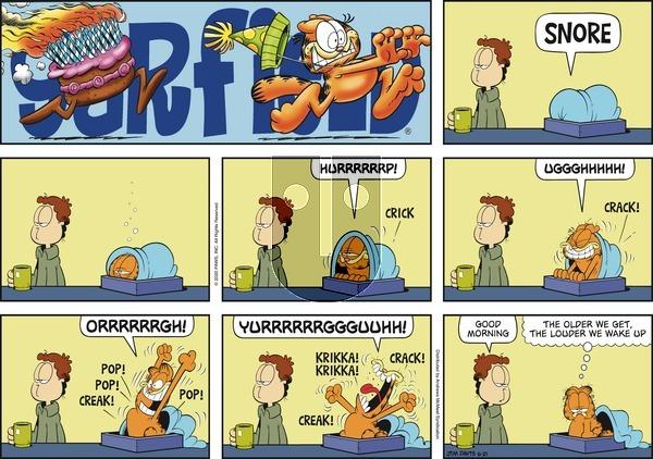 Garfield - Sunday June 21, 2020 Comic Strip